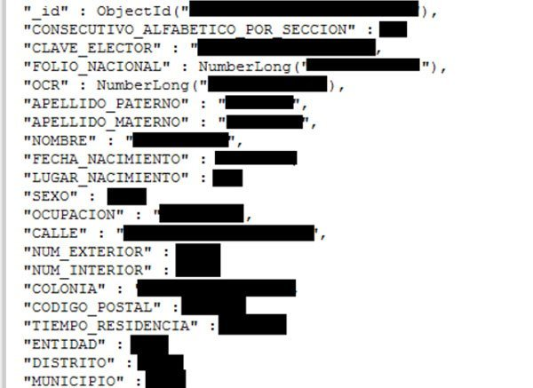 A redacted screenshot from the voter database.