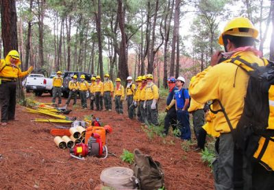 Conafor firefighters in a training session.