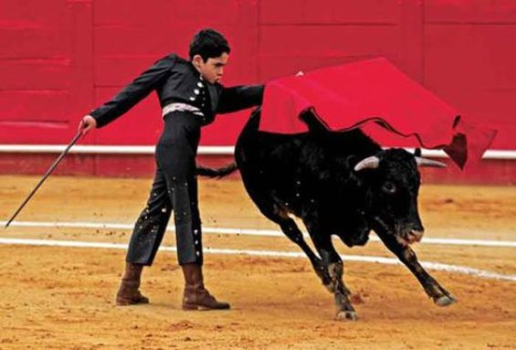 Young bullfighter in the ring in Texcoco.