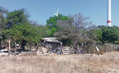 One of the Oaxaca ranches where cattle have been lost to the drought.