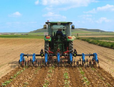 Agriculture industry forecasts double-digit growth