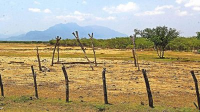 Emergency funds have been announced to address impact of drought in Oaxaca.