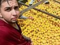 Castillo: sorting oranges is hot work