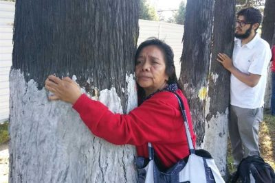Citizens hug trees slated to come down for new interurban train.