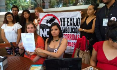 Animal rights activists called for a veto last month.