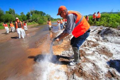Clean-up efforts after the copper mine spill.