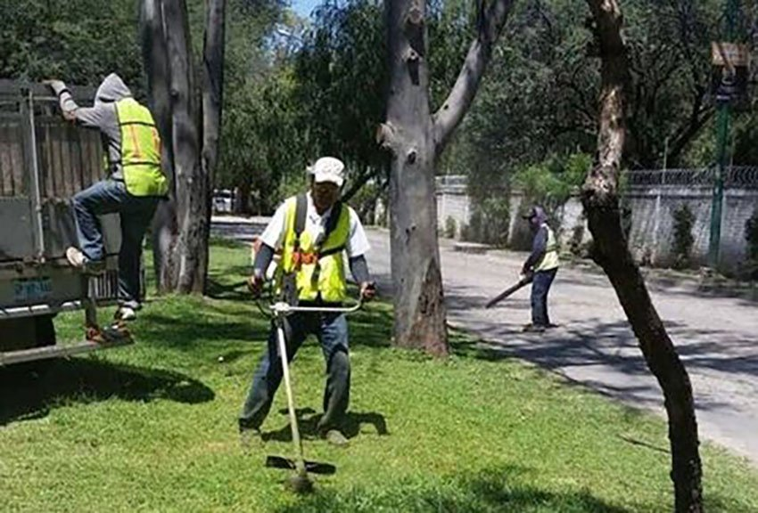 Municipal staff keeping the weeds down in León.