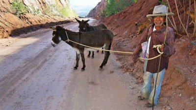 Long-awaited highway serves as a donkey track.