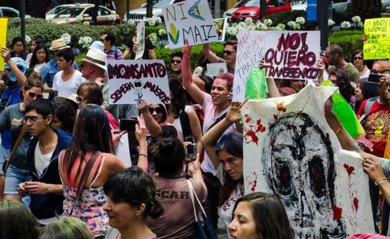 A Monsanto protest in Mexico City.