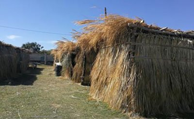 Straw-covered classrooms in San Mateo del Mar.
