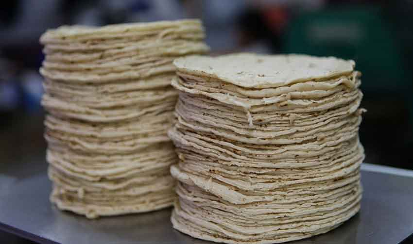 Corn tortillas: not as tasty anymore.