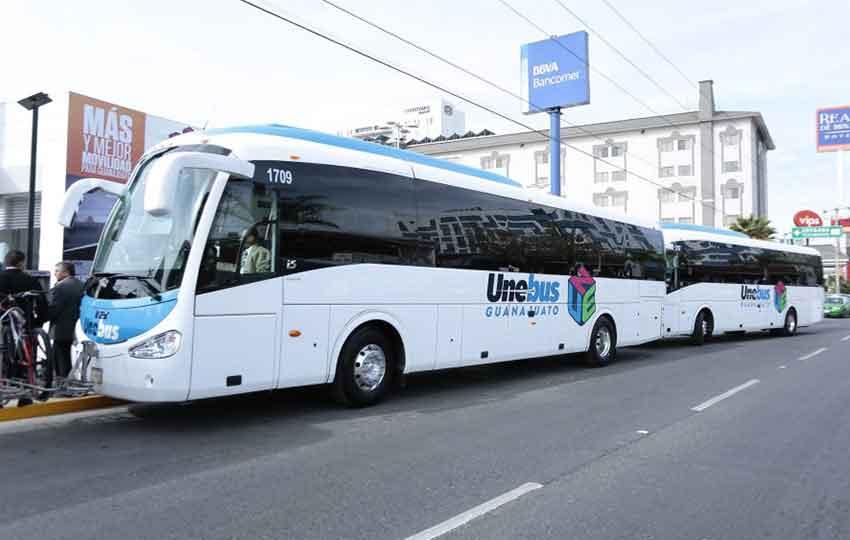 Guanajuato's new buses.