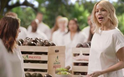 Where are the chips? This year's Super Bowl commercial for avocados.