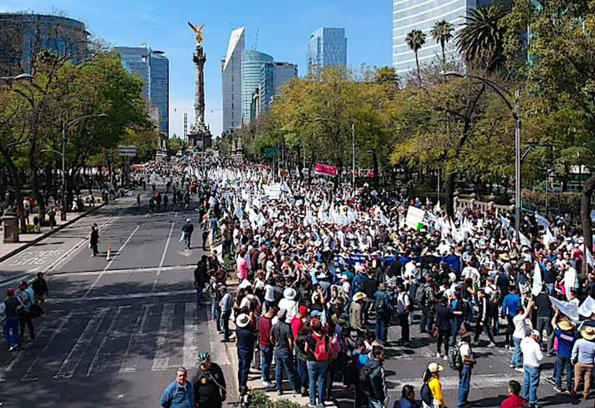 Chihuahua marchers arrive in Mexico City yesterday.