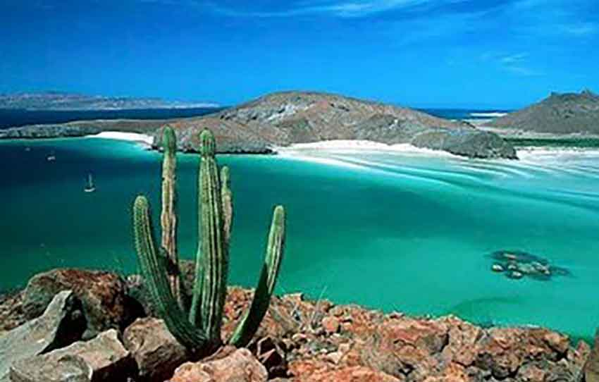 Killings have surged in Baja California Sur.
