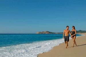 A beach in Los Cabos.