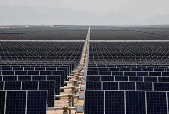 A sea of solar panels in Coahuila.