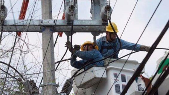 CFE workers
