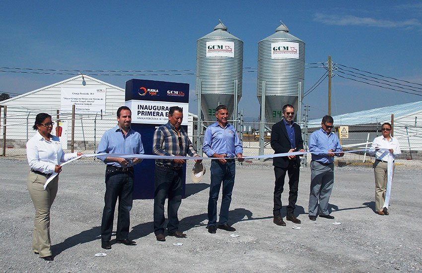 The company opened a new pig farm last year in Cuyoaco, Puebla, the second biggest in Mexico.