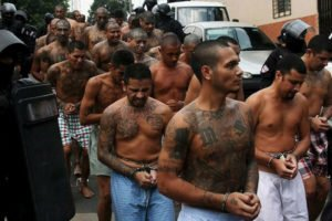 MS-13 gang members during an arrest in New York.