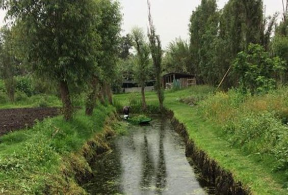 Xochimilco, site of a new restoration project.
