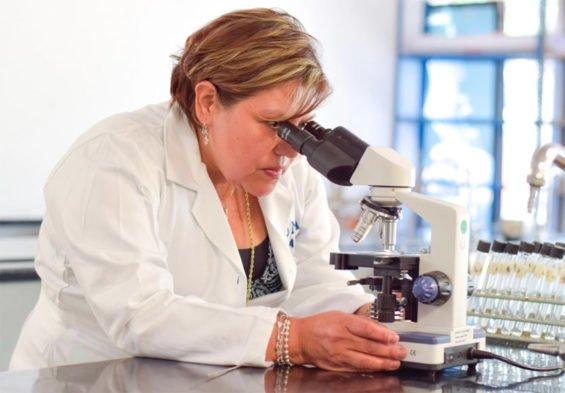 Researcher Gómez: healthier tortillas.