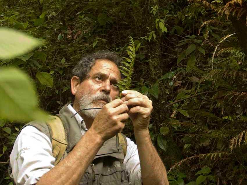 Mexican botanist Miguel Cházaro.