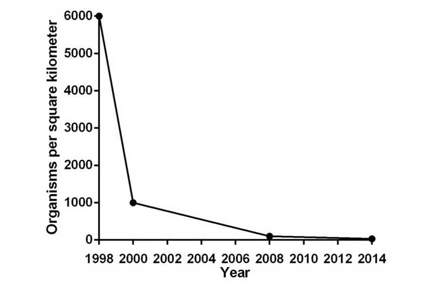 Population decline of axolotls—Bioscience