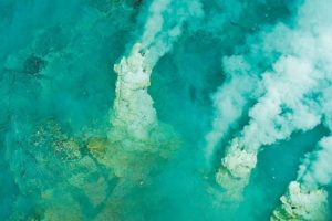 Hydrothermal vents have been discovered off the coast of Baja California Sur.