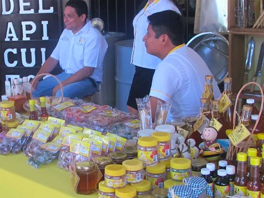 Honey products on display in Valladolid.