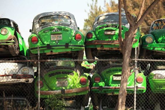 Vochos: a graveyard of old Mexico City taxis.