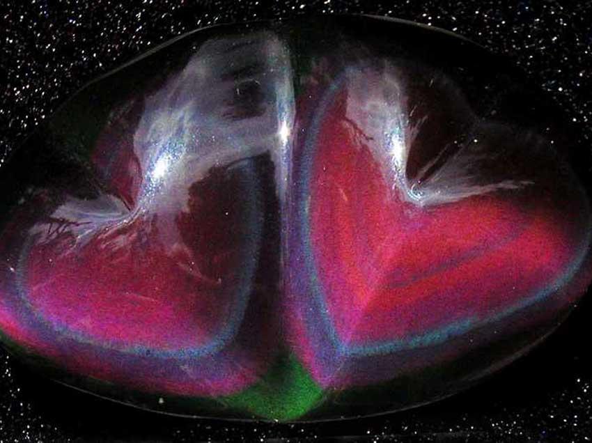 Rainbow obsidian hearts.