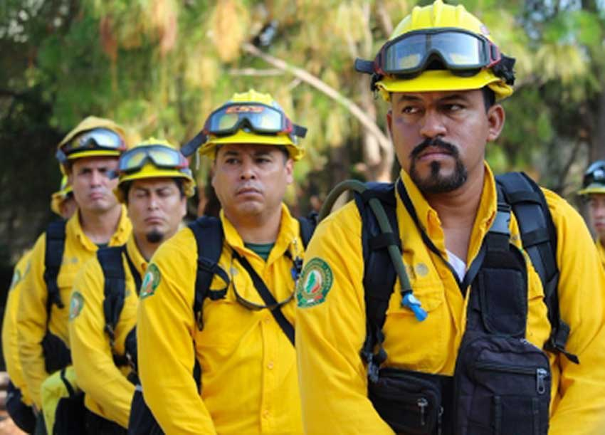Some of the Mexican firefighters who have been sent to Canada.
