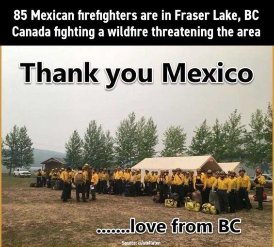 thank you mexican firefighters