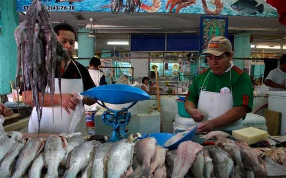 Thieves have been targeting shipments of fish from Yucatán.