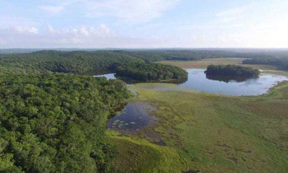 Chakanbakán lagoon in Quintana Roo.