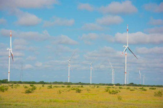Reynosa I, Mexico's biggest wind farm.