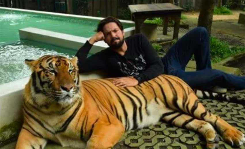 Lozano and one of his pet tigers.