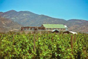 Baja winery La Carrodilla makes Mexico's first certified organic wine.