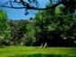 2Ceboruco-meadow