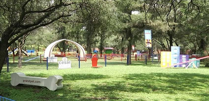 New park for dogs in León, Guanajuato.