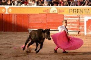 One of the Enanitos de Torreón takes on a bull.