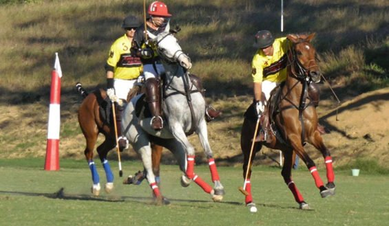 Polo players in San Pancho.