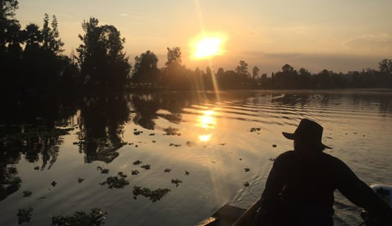 Sunrise in Xochimilco.
