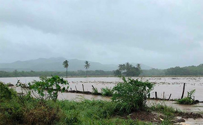 Flooding in Tomatlán, Jalisco, has devastated the crops of small producers.