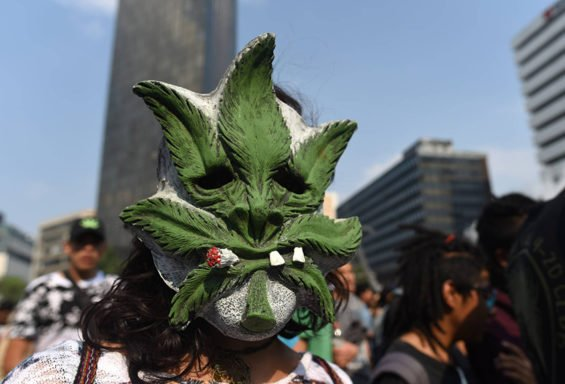 A pro-marijuana marcher at a demonstration in Mexico City.