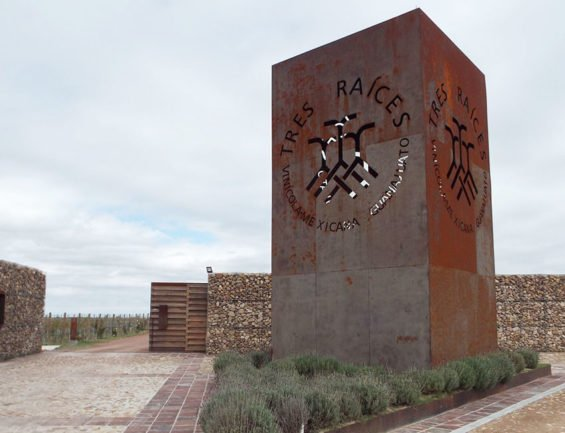 Tres Raíces winery in Guanajuato.