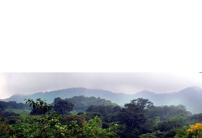 Sierra de Manantlán in the distance.