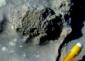 5–stromatolite