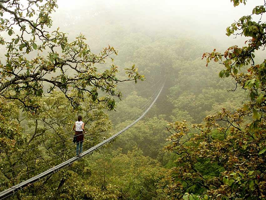 The 12-centimeter-wide suspension bridge.